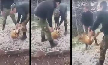 «Βρεγμένες γάτες» τώρα οι φαντάροι που κακοποίησαν το σκυλί