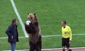 Σάλος με την αρκούδα... ανιματέρ στη Ρωσία (vid)