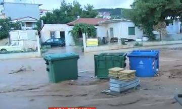 Πλημμύρισε πάλι η Μάνδρα (pic)
