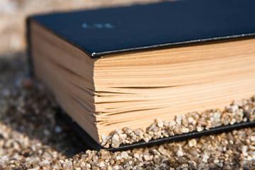 Ανεμοδαρμένα βιβλία