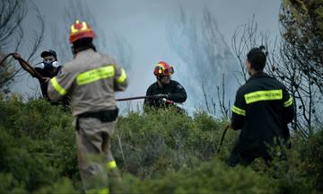 Υπό έλεγχο οι τέσσερις πυρκαγιές στην Κρήτη