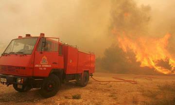 Σε εξέλιξη μεγάλη δασική πυρκαγιά στην Κινέτα
