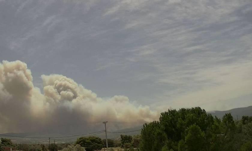 Σκέπασαν Δυτική Αττική και Πειραιά οι καπνοί από την φωτιά στην Κινέτα - Μάχη από αέρος