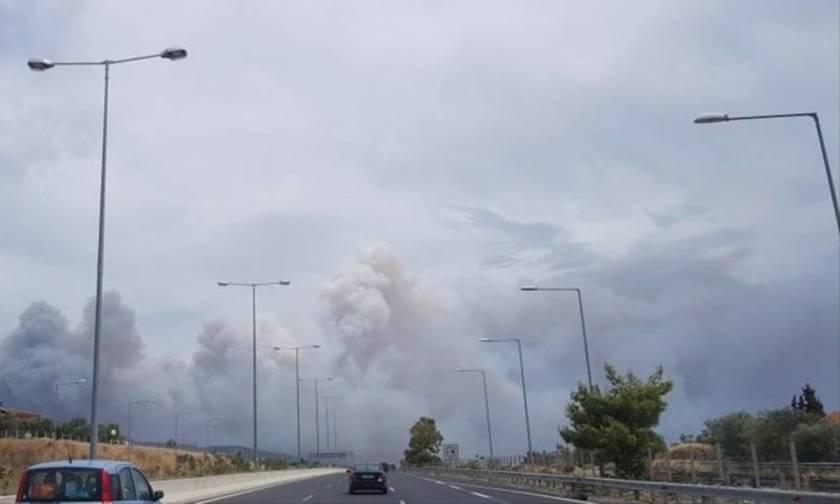 Εκκενώθηκαν τρεις οικισμοί της Κινέτας - Ανεξέλεγκτη η μεγάλη φωτιά στην Αττική