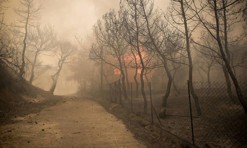 Συγκλονιστικό βίντεο από τη φωτιά στην Κινέτα