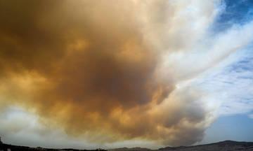 Θύρα 7 για τις φωτιές: «Δεν μένουμε αμέτοχοι»