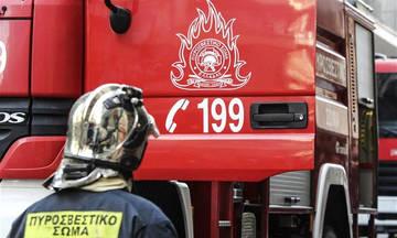 Αμαλιάδα: Συνελήφθη για δύο φωτιές από πρόθεση