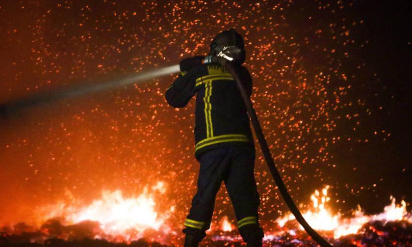 Το πανό της Θύρας 7 για τις πυρκαγιές (pic)