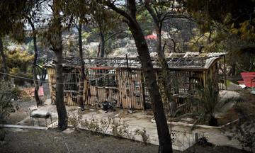 Κάηκε το σπίτι του Παντελή Ταρνατόρου στο Μάτι