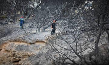 Ο πατέρας της Κάτιας Ζυγούλη σώθηκε από τις φλόγες μέσα σε φρεάτιο με νερό