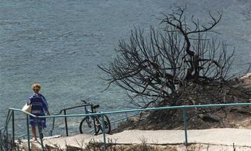 Εισαγγελέας ερευνά την πρόσβαση των πολιτών στις παραλίες στο Μάτι