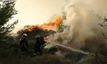 Έβαζε φωτιές γιατί του άρεσε «να βλέπει τους πυροσβέστες να τρέχουν να τις σβήνουν»!