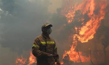 Προσοχή: Πολύ αυξημένος ο κίνδυνος φωτιάς την Παρασκευή