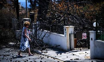 Μάτι: Στους 94 οι νεκροί της φονικής πυρκαγιάς