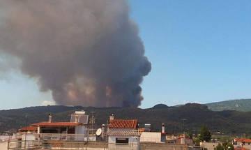 Πυροσβεστική: Προς πλήρη κατάσβεση η πυρκαγιά στην Εύβοια