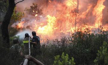 Κατέληξε κι άλλος εγκαυματίας, στους 96 οι νεκροί της πυρκαγιάς