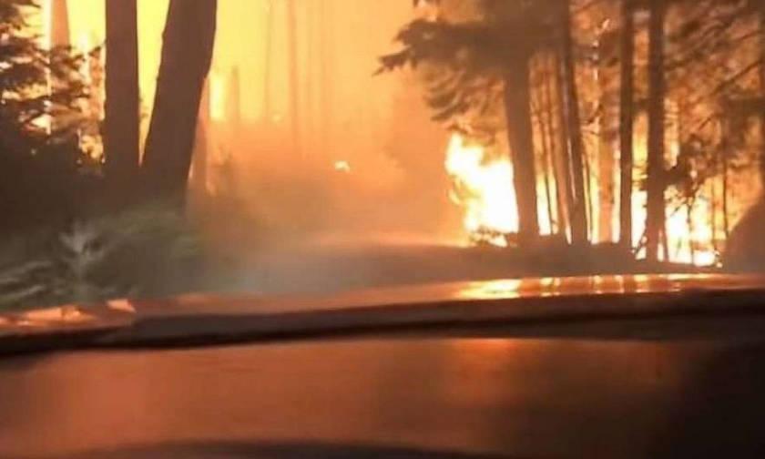 Πυρκαγιές Μοντάνα: Τρομακτικό βίντεο πατέρα και γιου που οδηγούν μέσα στις φωτιές