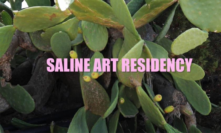 Saline Art Residency: Δημόσιες γλυπτικές δράσεις σε Πόρτο Χέλι και Ερμιόνη