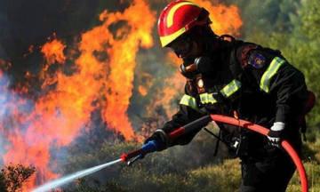 Σε εξέλιξη φωτιά στη Μάνη - Τραυματίστηκαν δύο πυροσβέστες