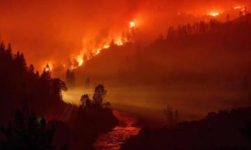 Τεράστια πυρκαγιά στην Καλιφόρνια, «στάχτη» 100.000 στρέματα
