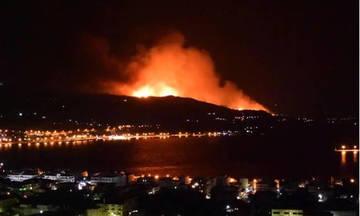 Μεγάλη φωτιά σε δύσβατη περιοχή στη Σάμο (vid)
