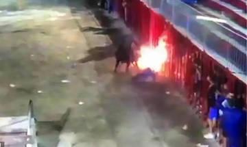 Φλεγόμενος ταύρος σκότωσε άνδρα στην Ισπανία (vid)