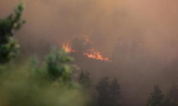 Στις παρυφές της Σάρτης έφτασε η πυρκαγιά της Χαλκιδικής