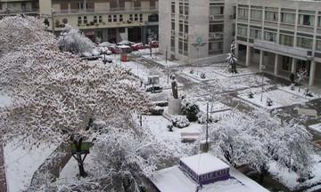 Χειμωνιάζει ξαφνικά. Βροχές και χιόνια - Η πρόβλεψη του Αρνιακού (vid)