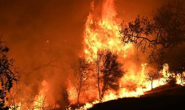Καλιφόρνια: Το βίντεο μιας οικογένειας που προσπαθεί να ξεφύγει από την πυρκαγιά