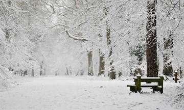 Χιόνια, βροχές και μποφόρ -Χειμωνιάτικο σκηνικό και σήμερα