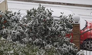 Έρχεται χιονιάς και σε τμήματα με χαμηλά υψόμετρα -Που έδειξε -12 το θερμόμετρο -Πρόβλεψη Καλλιάνου