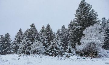 Ο καιρός της Πέμπτης (13/12): Έρχονται χιόνια...