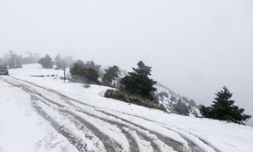 Xιονίζει στην Πάρνηθα- Σε ποια ορεινά δίκτυα η κυκλοφορία γίνεται με αλυσίδες