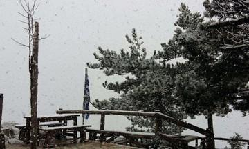 Σφοδρή χιονόπτωση τώρα στην Πάρνηθα - Έκλεισε ο δρόμος - Δείτε τι δείχνει η live camera