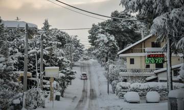 «Παγοδρόμια» οι δρόμοι, κλειστά σχολεία & νέα, χειρότερη, κακοκαιρία [βίντεο]