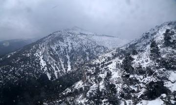 Στα λευκά η Πάρνηθα - Χιονίζει τώρα - Δείτε βίντεο και ζωντανή εικόνα