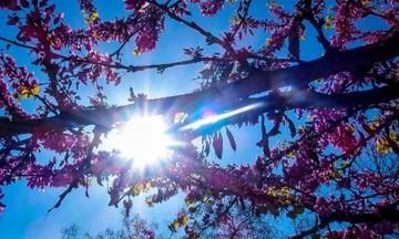 Με ήλιο η 25η Μαρτίου -Εως 23 βαθμούς η θερμοκρασία