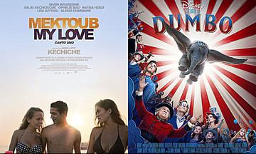 Νέες ταινίες: «Mektoub, Αγάπη μου», «Ντάμπο»