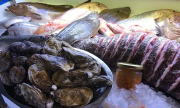 Ψαρομανία, για τους λάτρεις των θαλασσινών