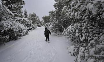 Χιόνια σε Πάρνηθα - Κιθαιρώνα - 150 χιλιόμετρα την ώρα οι άνεμοι στον Παρνασσό