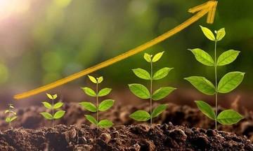 Εταιρίες και ΜΚΟ που ξεχώρισαν στη Βιώσιμη Ανάπτυξη