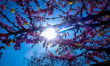 Καιρός Πάσχα: Η πρώτη ασφαλής πρόβλεψη - Ανά ημέρα σε όλη τη χώρα