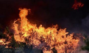 Υψηλός κίνδυνος πυρκαγιάς σήμερα, Παρασκευή 14 Ιουνίου