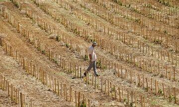 Η Ελλάδα κινδυνεύει να γίνει έρημος