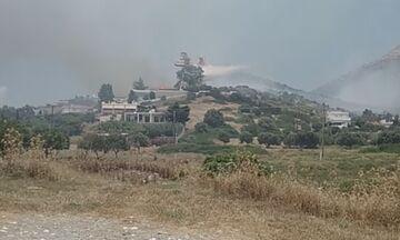 Μεγάλη πυρκαγιά στο Λαγόνησι