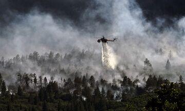 Πολύ υψηλός κίνδυνος πυρκαγιάς (κατηγορία κινδύνου 4) για σήμερα Κυριακή 30 Ιουνίου 2019