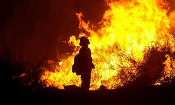 Φωτιά στην Εύβοια: Ολονύχτια.. κόλαση - Δύο νέες εστίες, εκκενώνονται τέσσερα χωριά