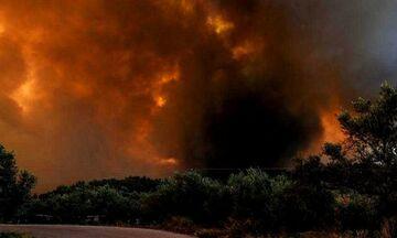 Φωτιά στην Εύβοια: Σύλληψη ατόμου για εμπρησμό στα Μανίκια
