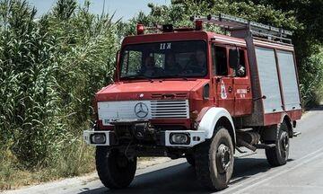 Φωτιά Εύβοια: Νέα μέτωπα και αναζωπυρώσεις