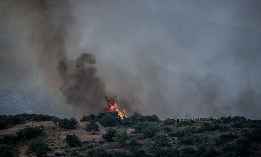 Φωτιά Εύβοια: Ο Μπακογιάννης κήρυξε την Εύβοια σε κατάσταση εκτάκτου ανάγκης